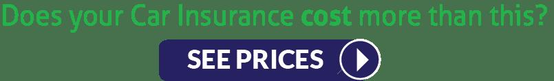 Car Insurance costs The Panda