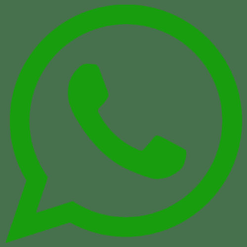 whatsapp MoneyPanda for car insurance